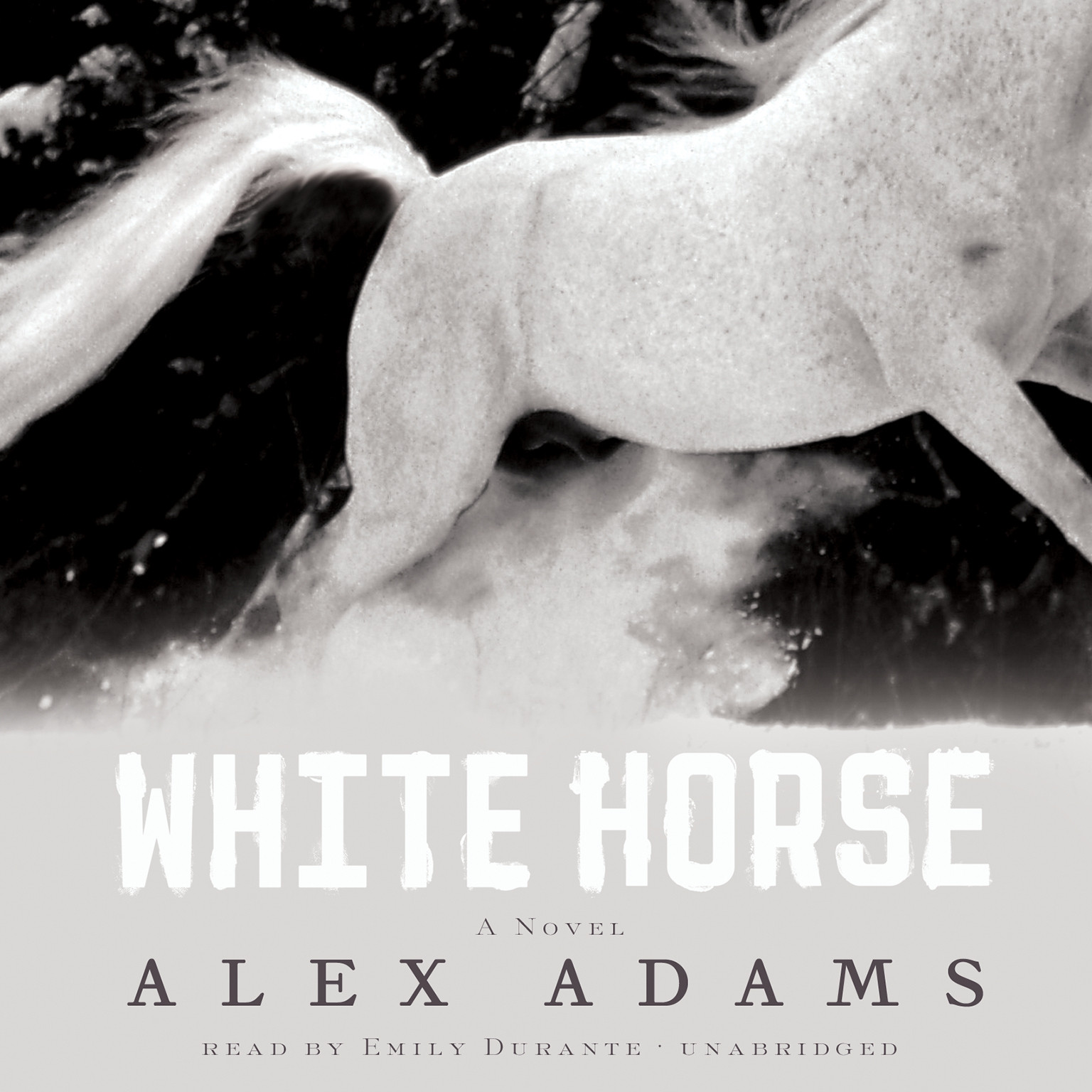 Printable White Horse: A Novel Audiobook Cover Art