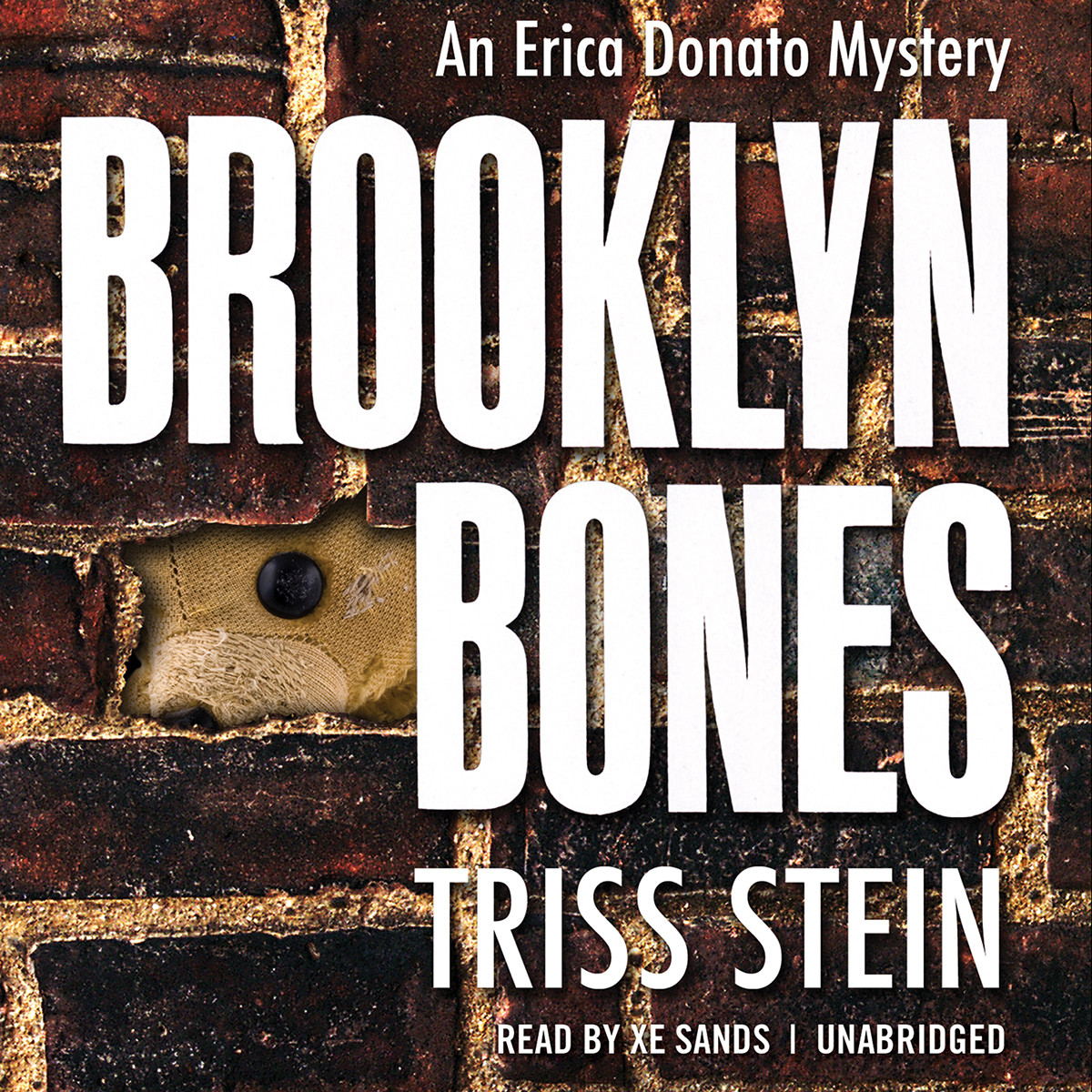 Printable Brooklyn Bones Audiobook Cover Art