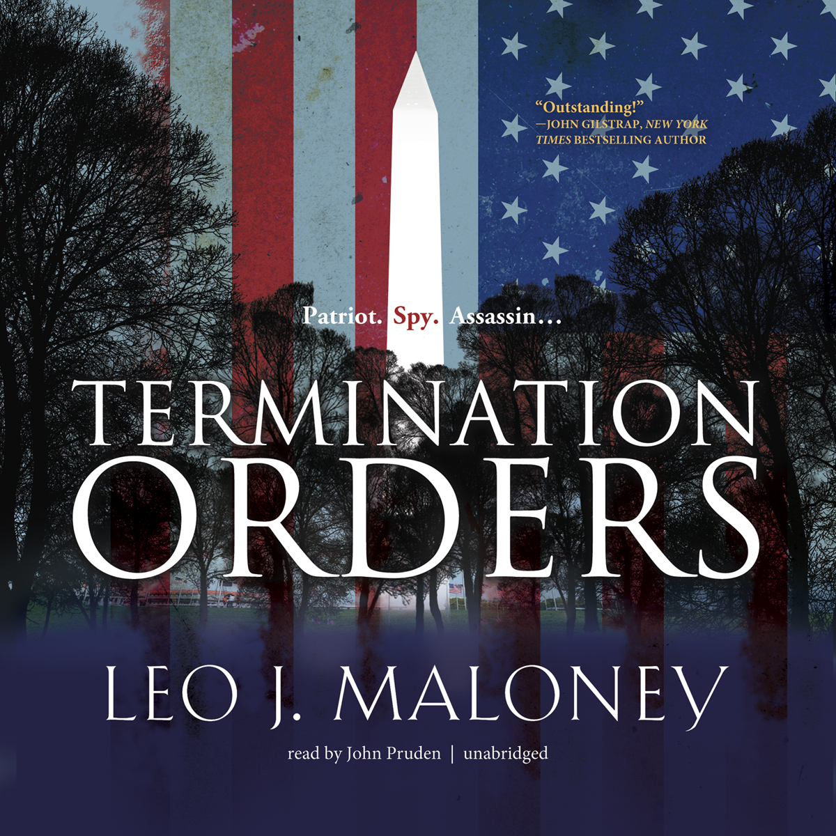 Printable Termination Orders Audiobook Cover Art