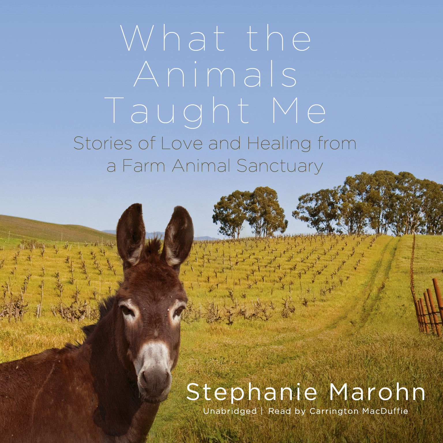 Printable What the Animals Taught Me: Stories of Love and Healing from a Farm Animal Sanctuary Audiobook Cover Art