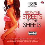From the Streets to the Sheets: Urban Erotic Quickies Audiobook, by Noire