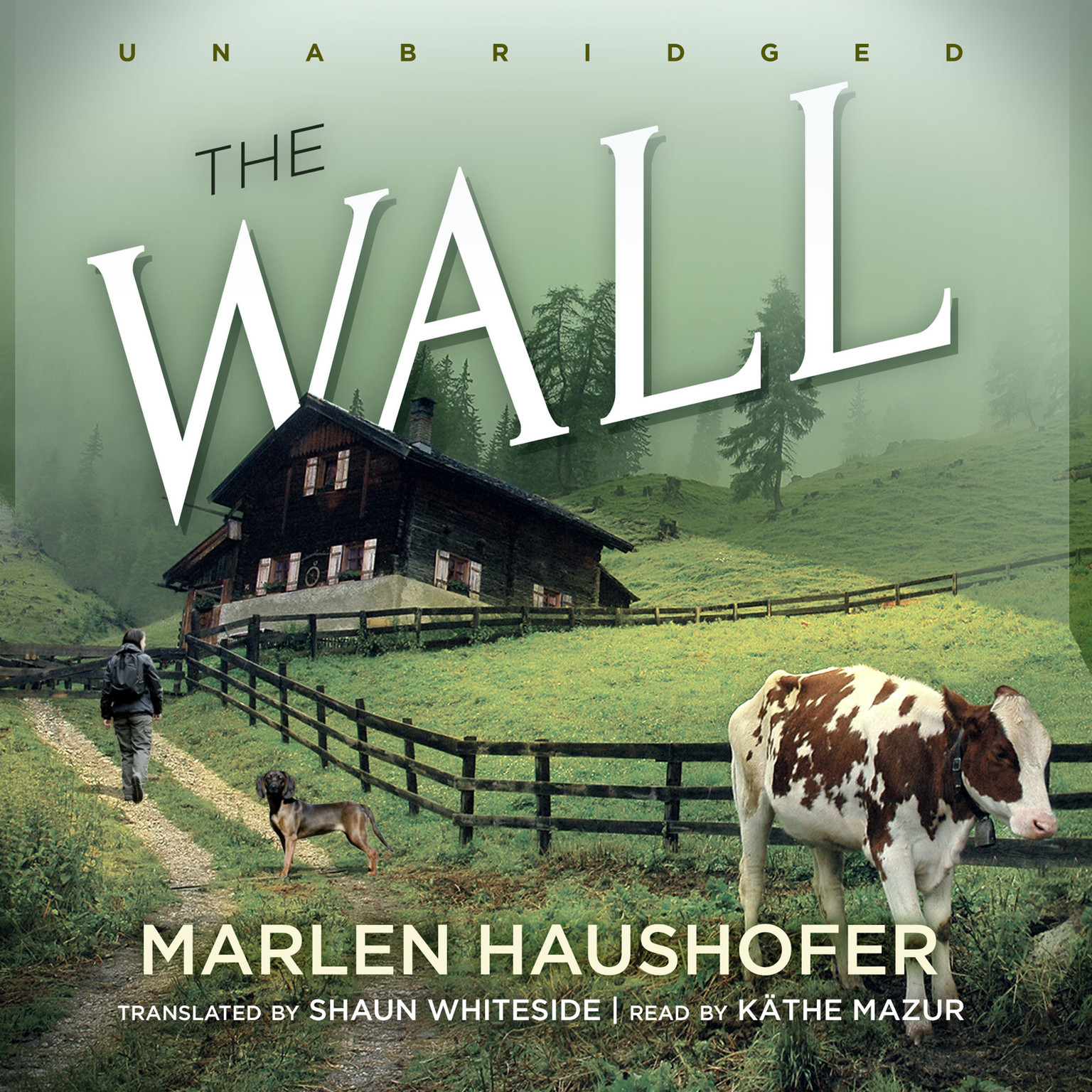 Printable The Wall Audiobook Cover Art