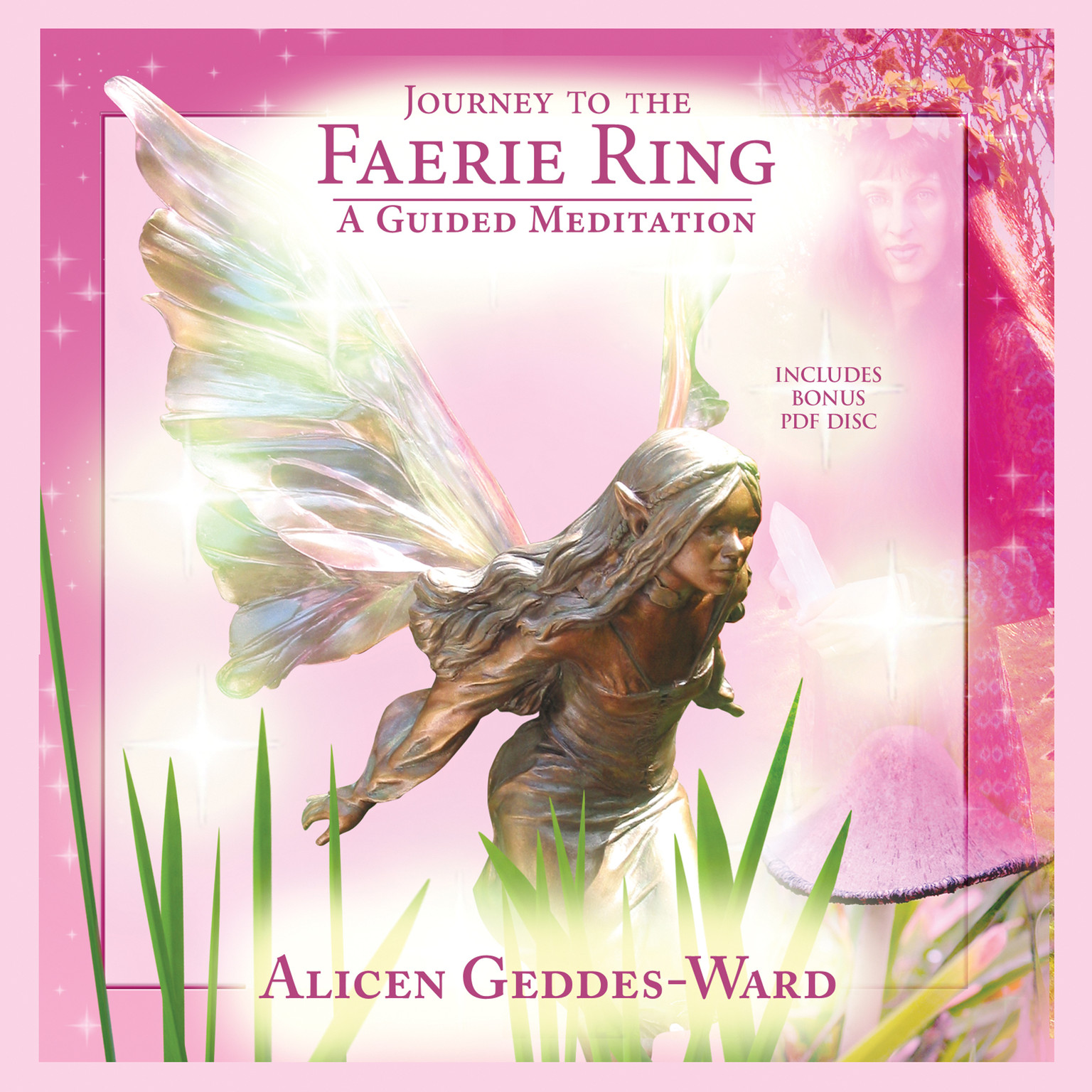 Printable Journey to the Faerie Ring Audiobook Cover Art