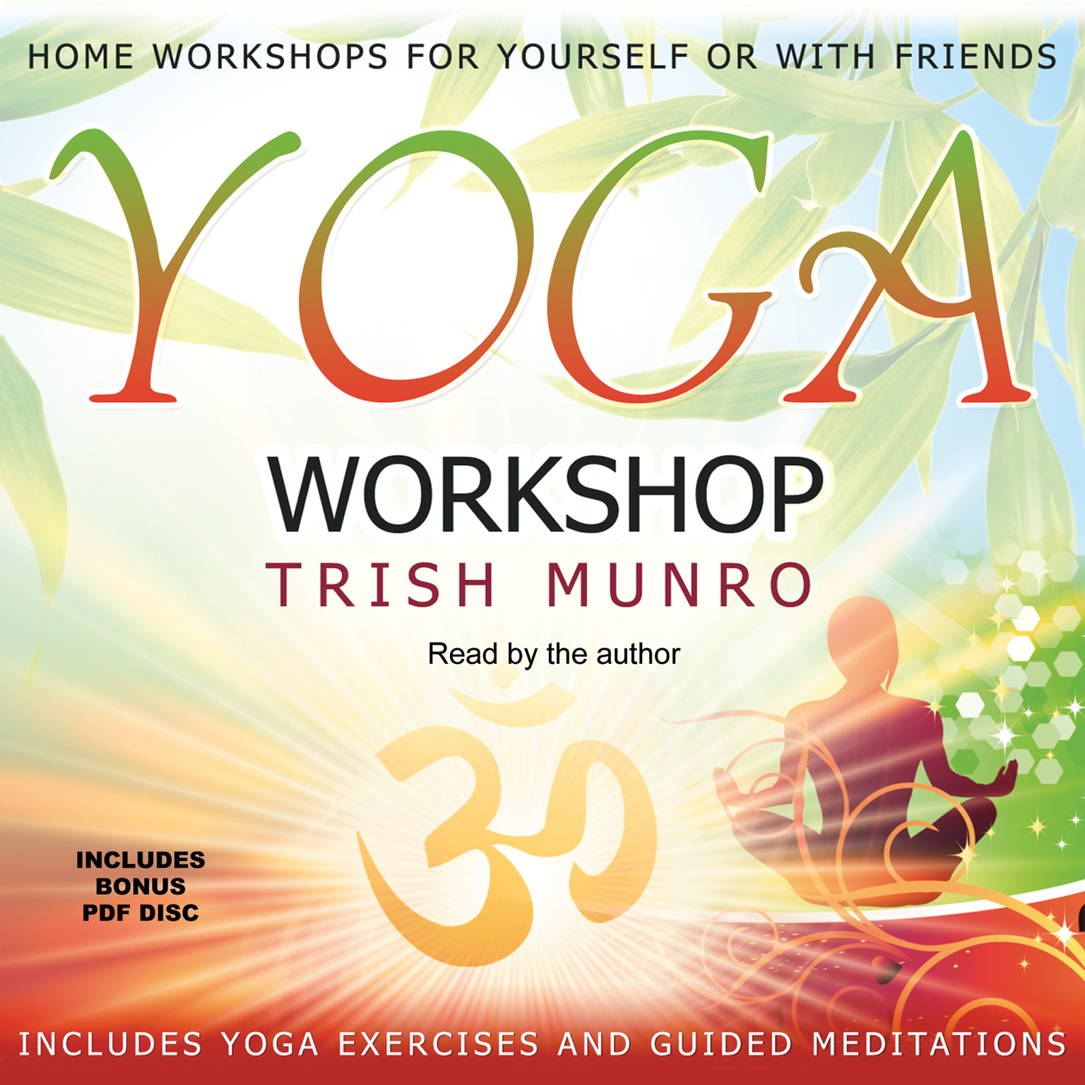 Printable Yoga Workshop Audiobook Cover Art