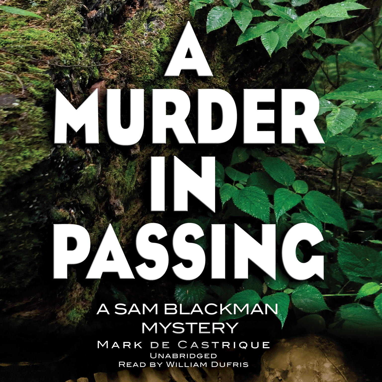 Printable A Murder in Passing: A Sam Blackman Mystery Audiobook Cover Art