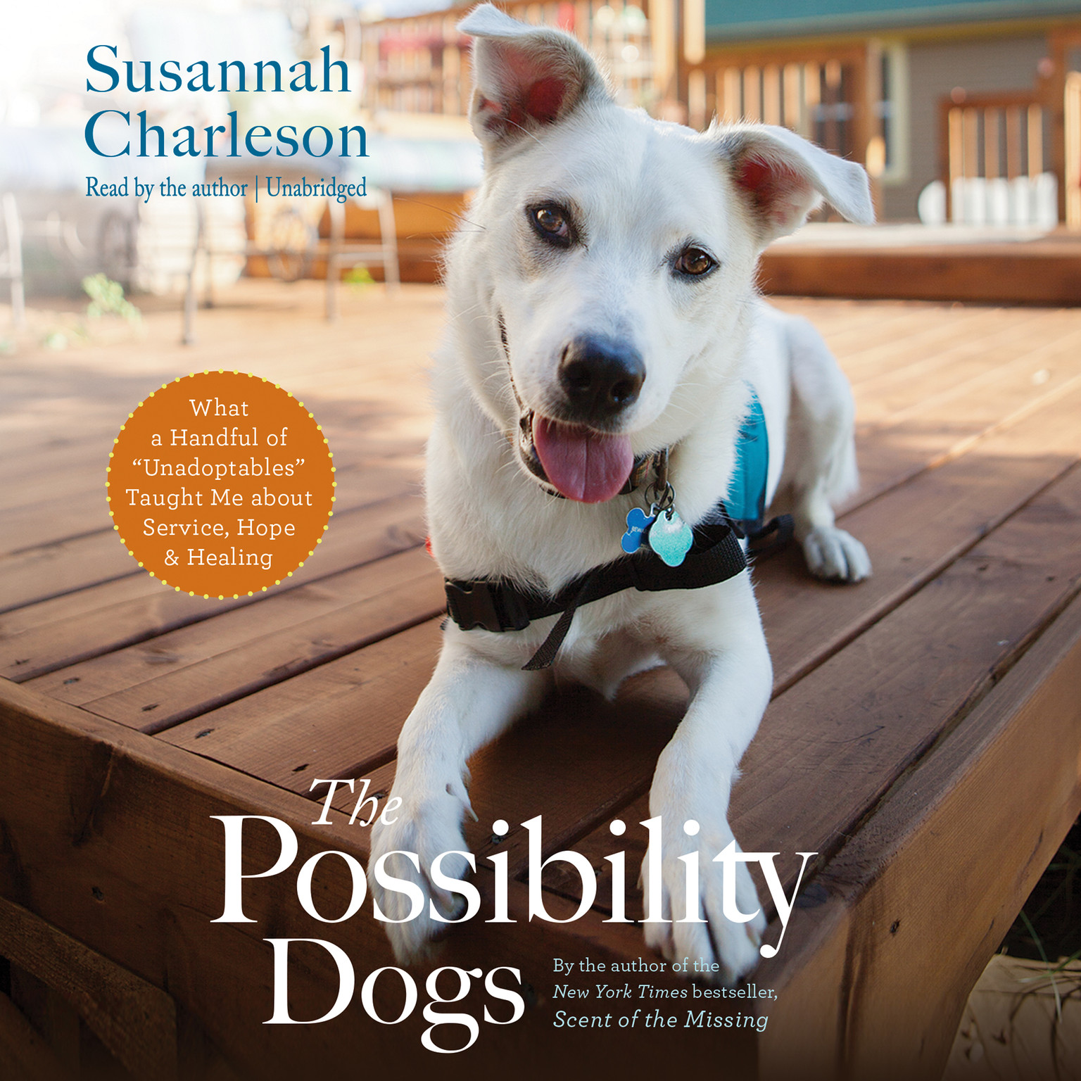 "Printable The Possibility Dogs: What a Handful of ""Unadoptables"" Taught Me about Service, Hope, and Healing Audiobook Cover Art"