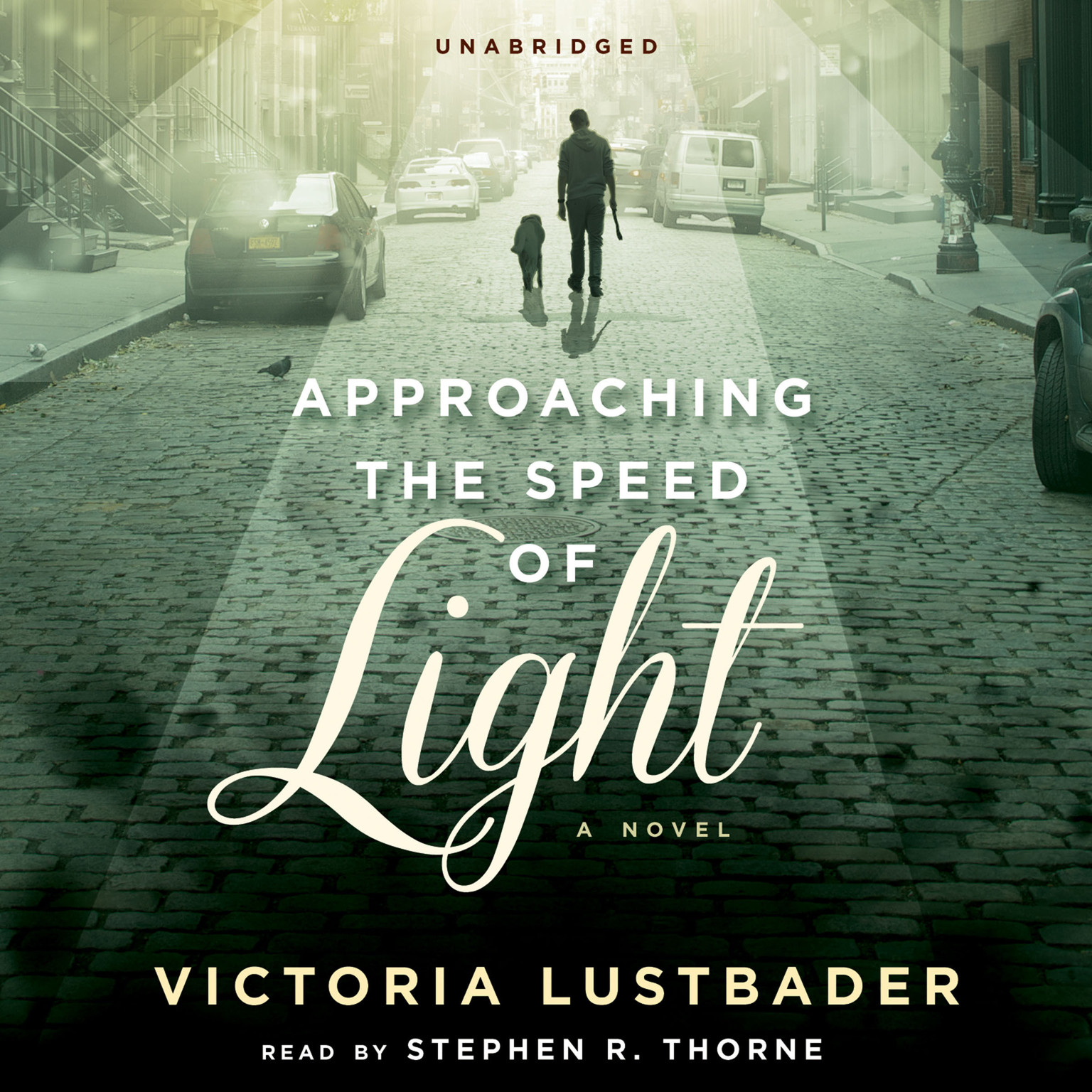 Printable Approaching the Speed of Light: A Novel Audiobook Cover Art