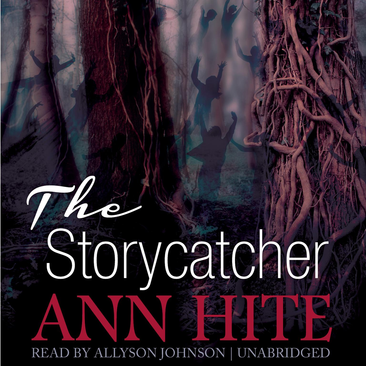Printable The Storycatcher Audiobook Cover Art