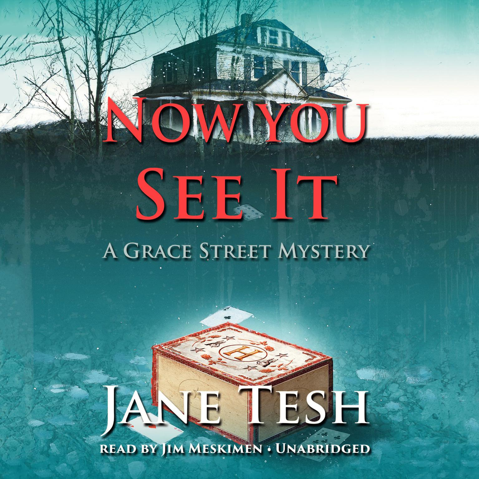 Printable Now You See It: A Grace Street Mystery Audiobook Cover Art