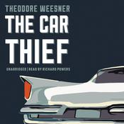 The Car Thief Audiobook, by Theodore Weesner