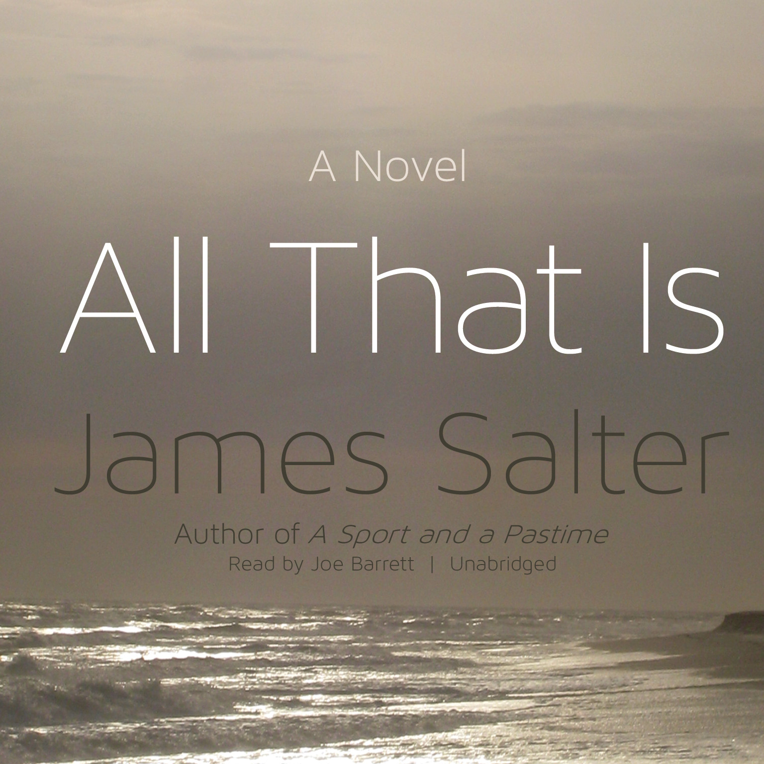 Printable All That Is: A Novel Audiobook Cover Art