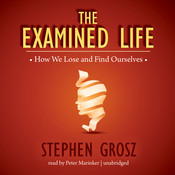 The Examined Life: How We Lose and Find Ourselves Audiobook, by Stephen Grosz