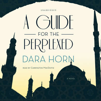 A Guide for the Perplexed: A Novel Audiobook, by Dara Horn