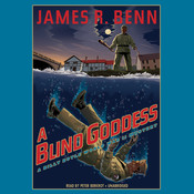 A Blind Goddess: A Billy Boyle World War II Mystery Audiobook, by James R. Benn