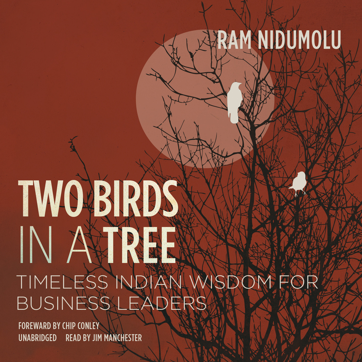 Printable Two Birds in a Tree: Timeless Indian Wisdom for Business Leaders Audiobook Cover Art