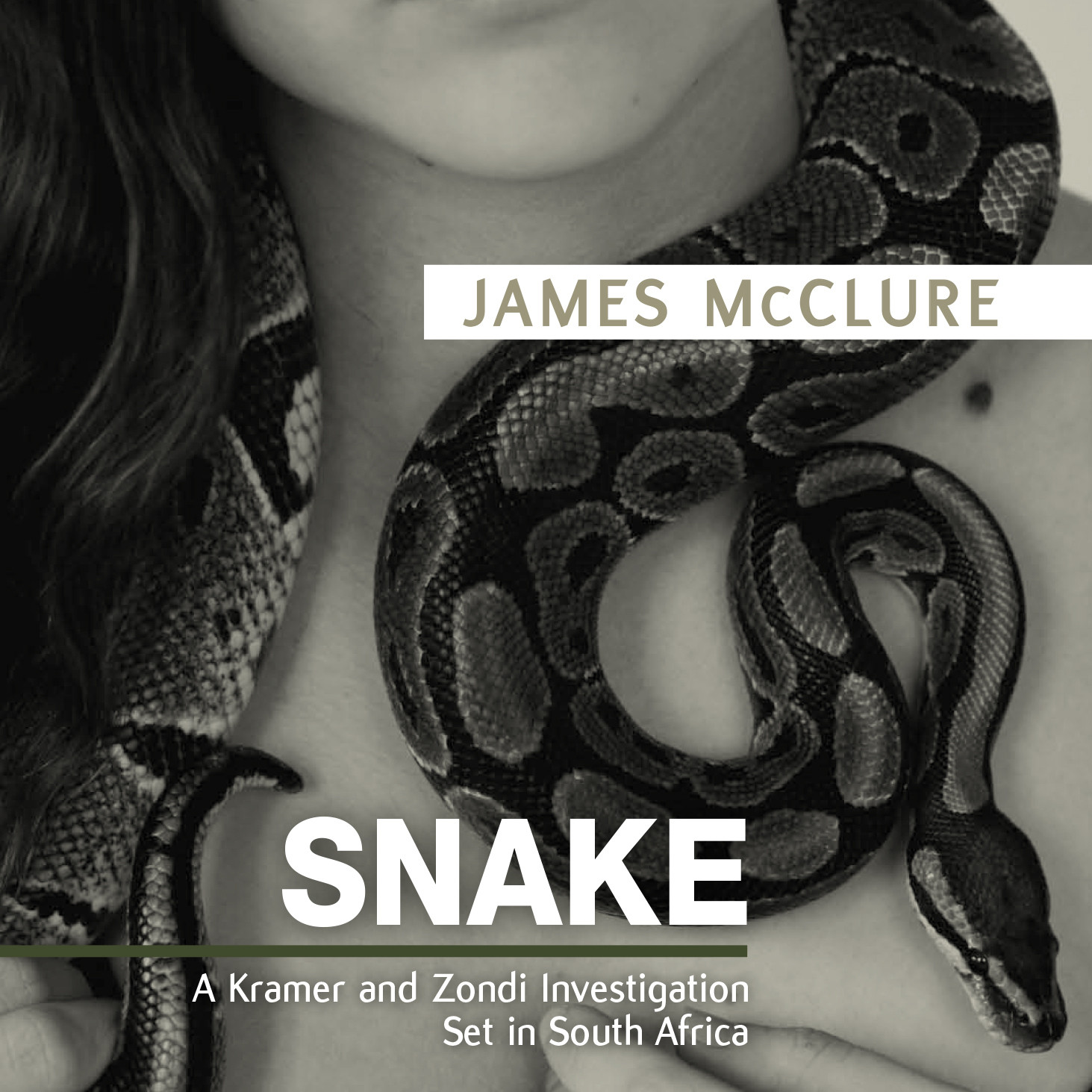 Printable Snake Audiobook Cover Art