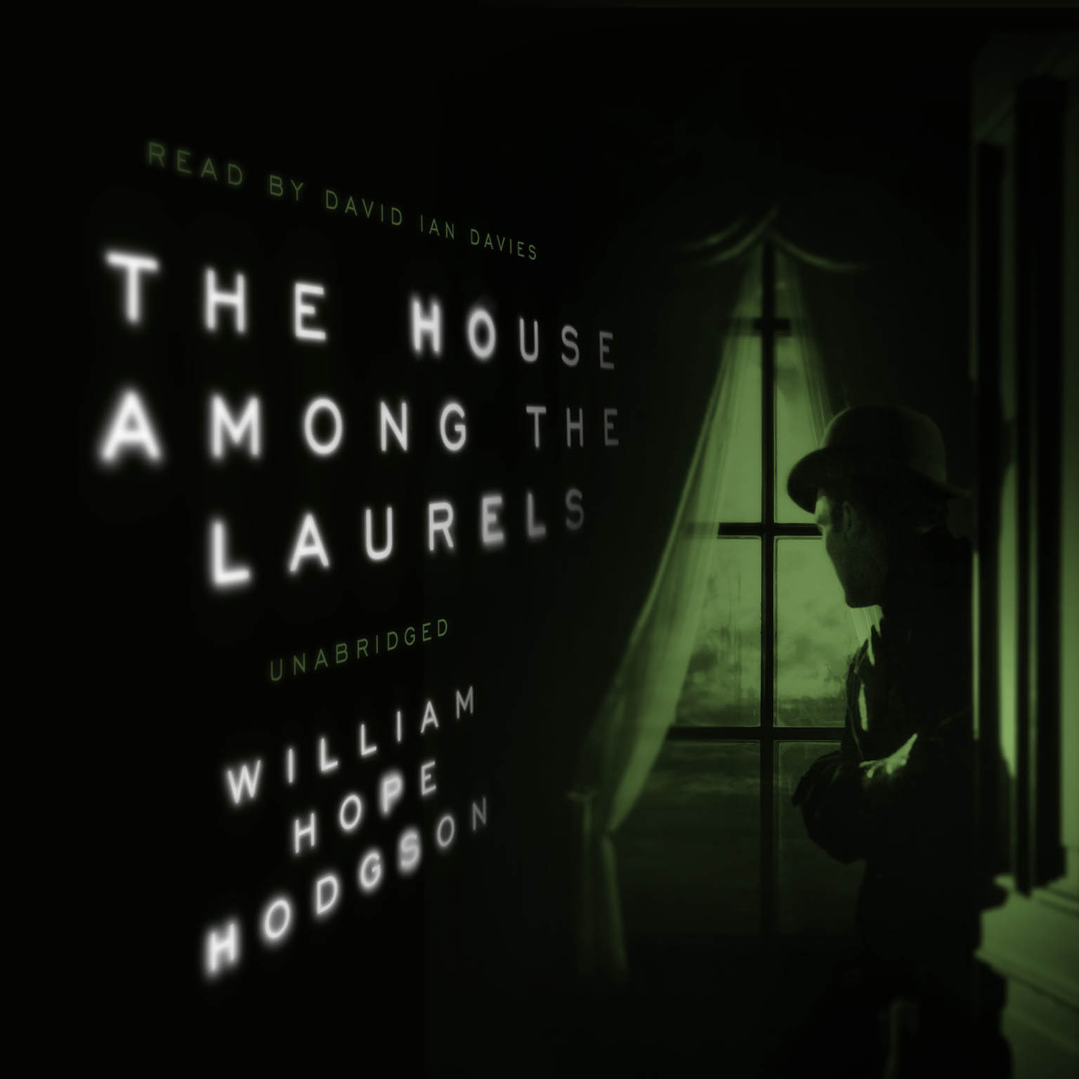 Printable The House among the Laurels Audiobook Cover Art