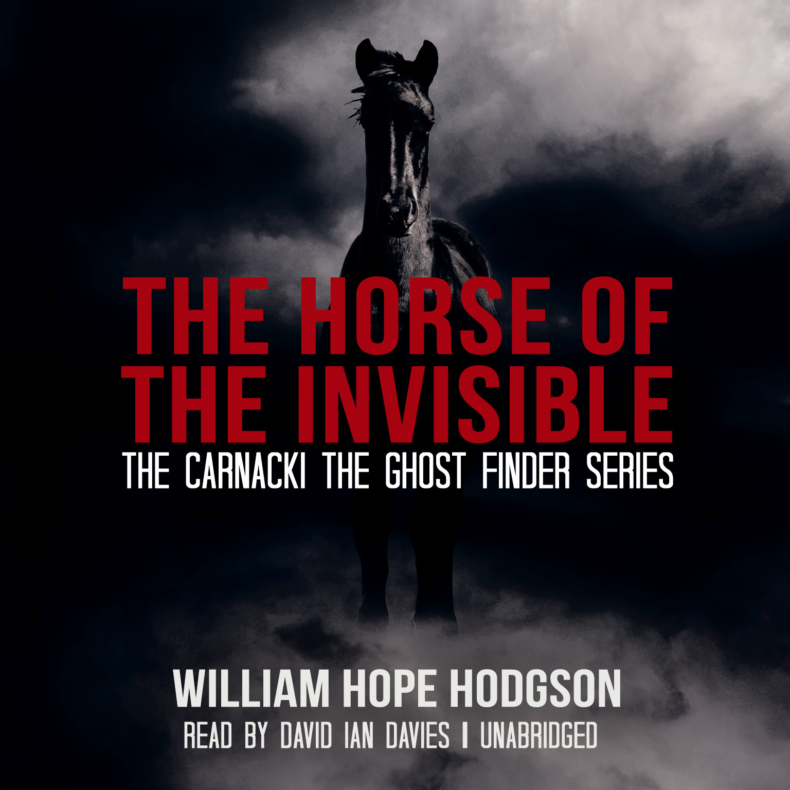 Printable The Horse of the Invisible Audiobook Cover Art