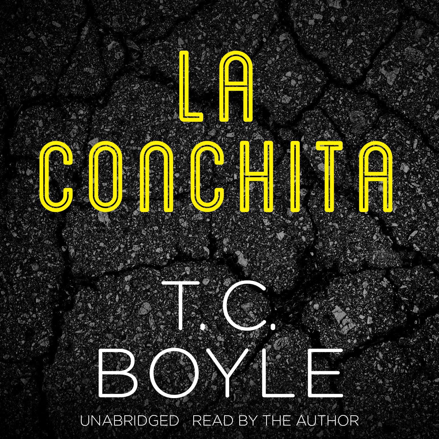 Printable La Conchita Audiobook Cover Art