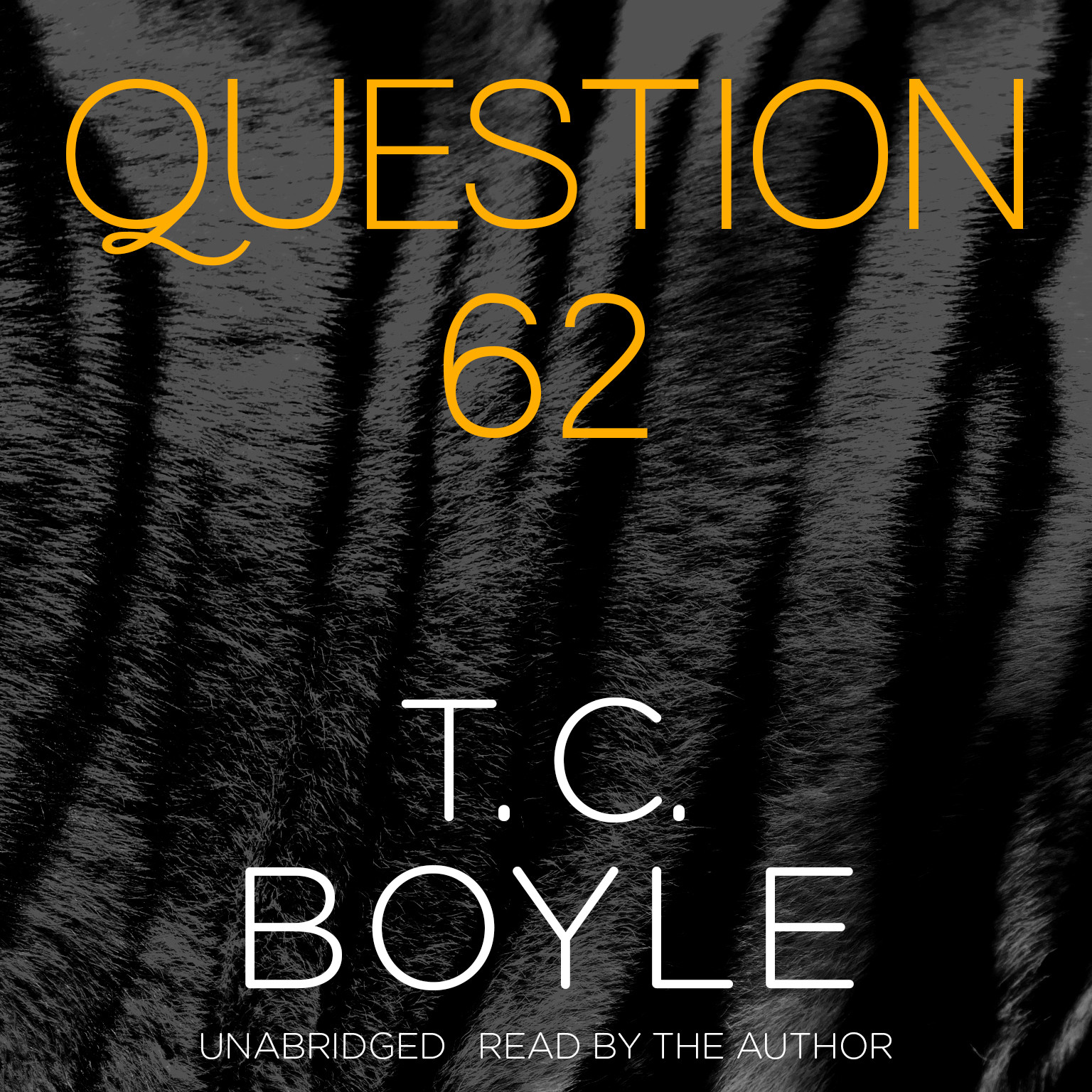 Printable Question 62 Audiobook Cover Art