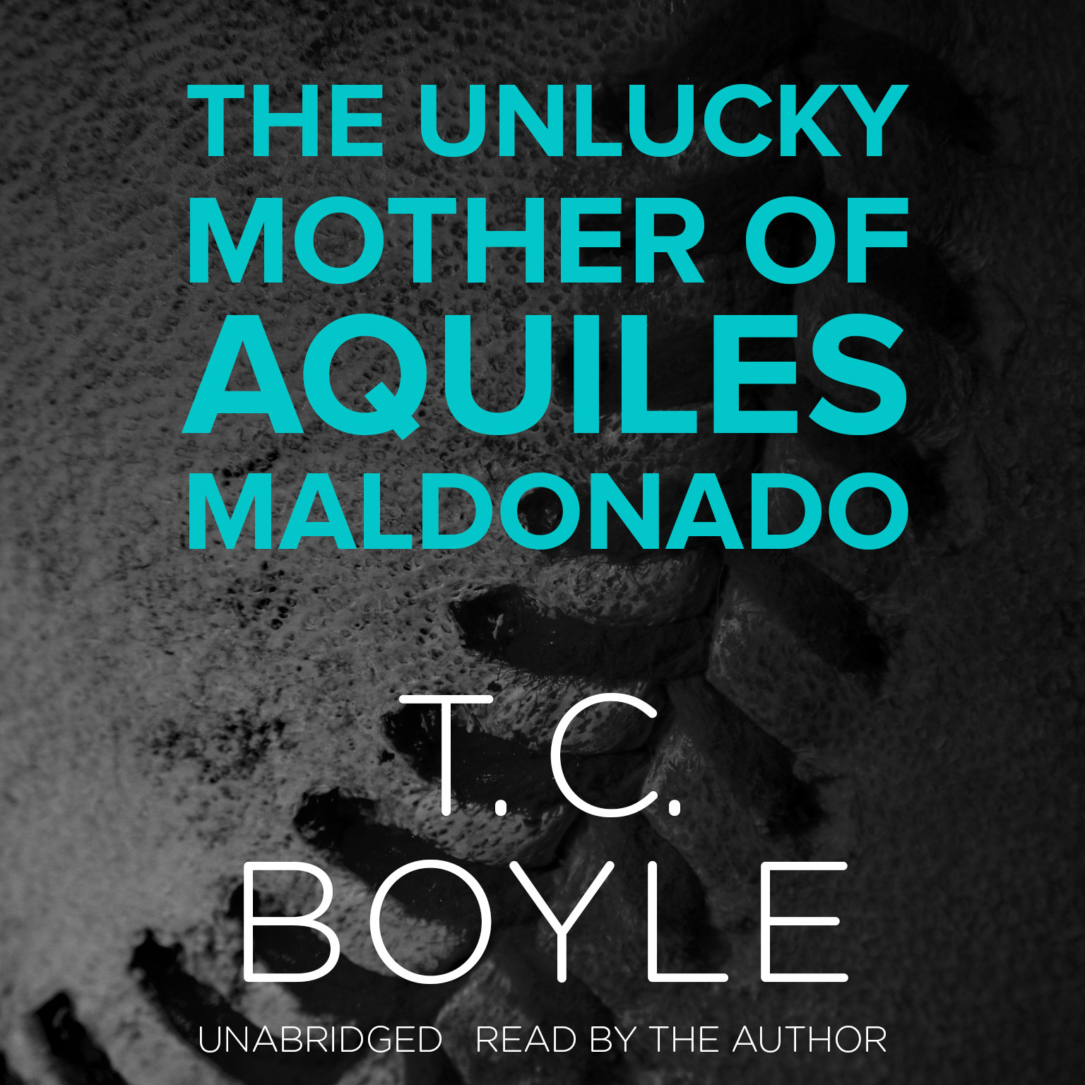 Printable The Unlucky Mother of Aquiles Maldonado Audiobook Cover Art