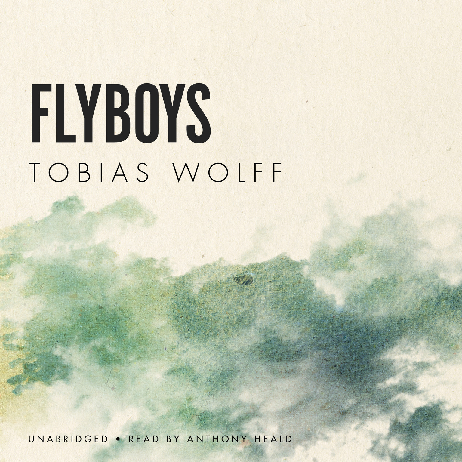 Printable Flyboys Audiobook Cover Art