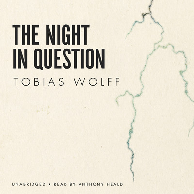 The Night in Question Audiobook, by Tobias Wolff