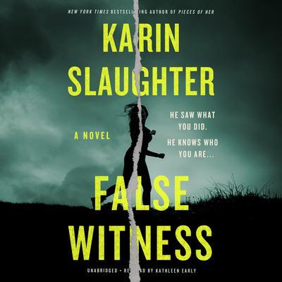 False Witness Audiobook, by