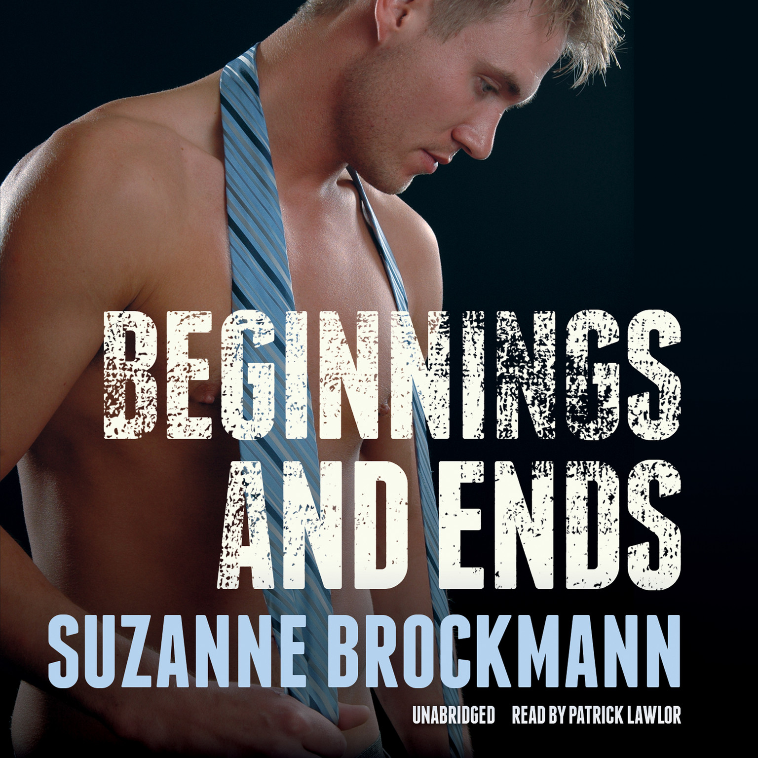 Printable Beginnings and Ends Audiobook Cover Art