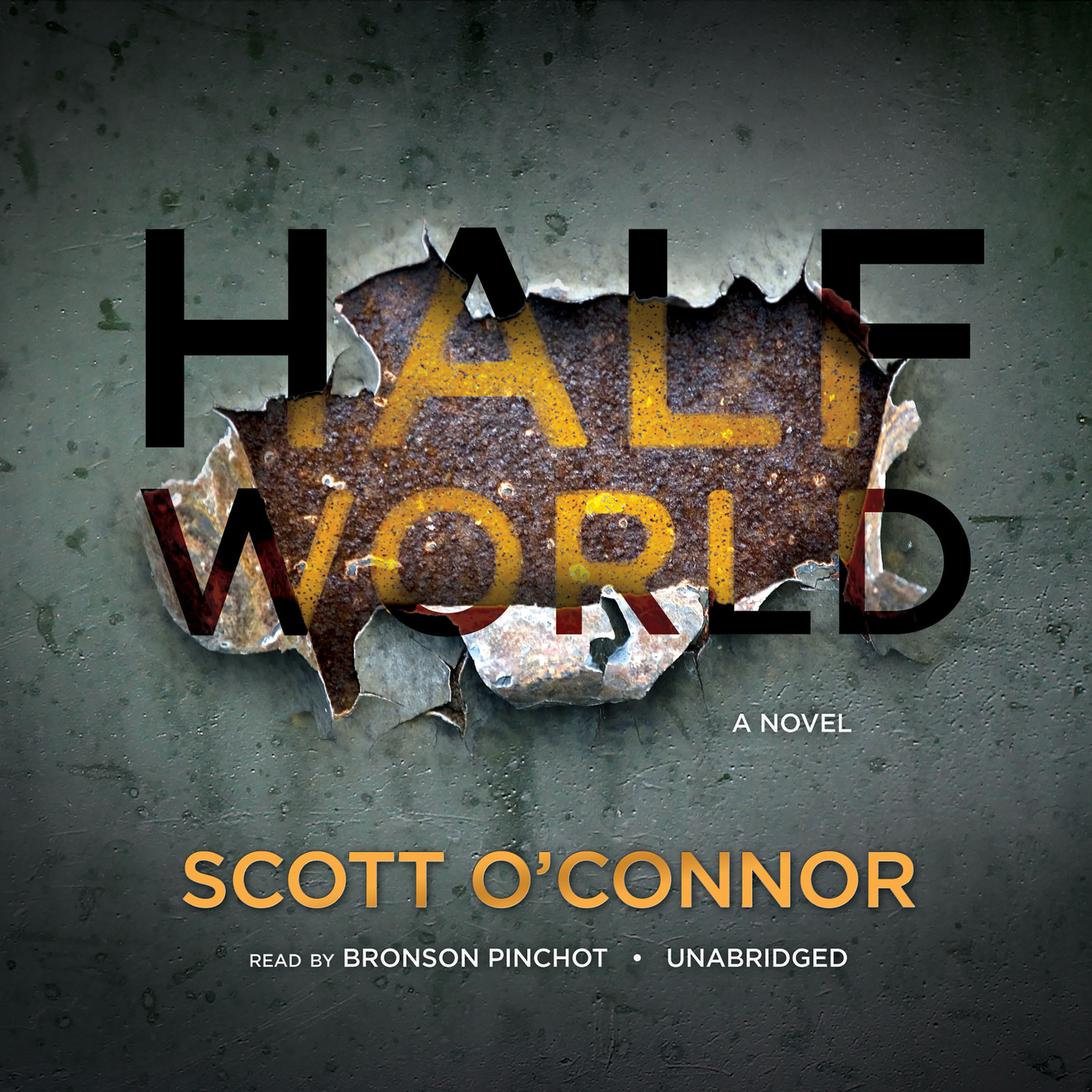 Printable Half World: A Novel Audiobook Cover Art