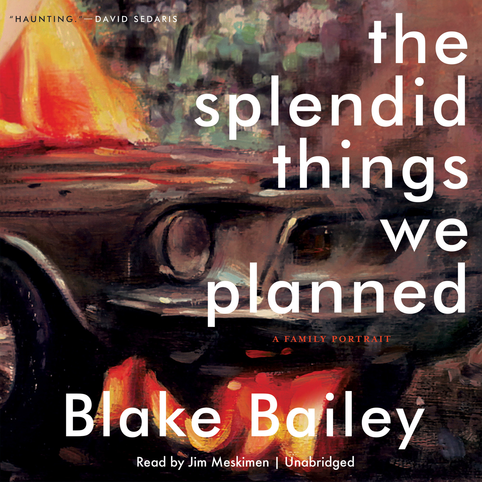 Printable The Splendid Things We Planned: A Family Portrait Audiobook Cover Art