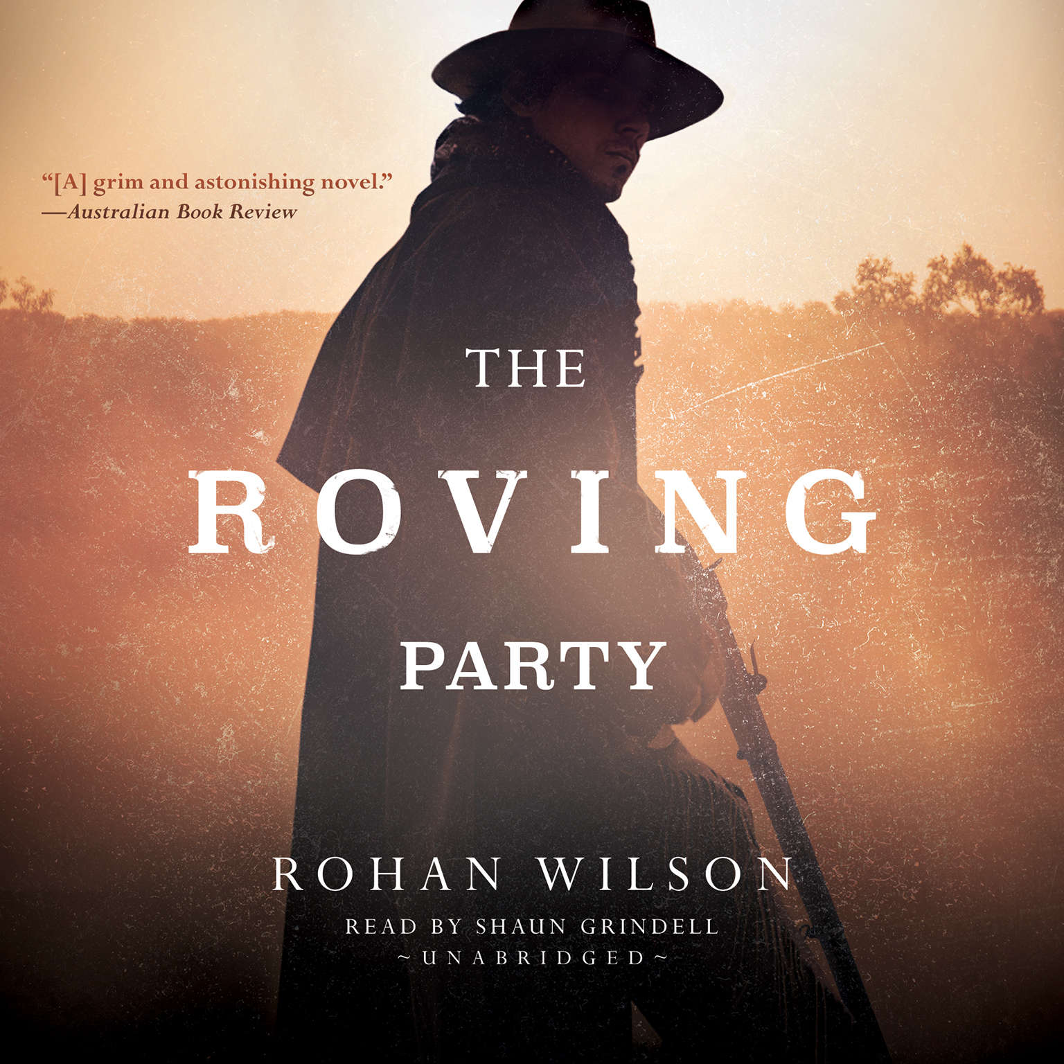 Printable The Roving Party Audiobook Cover Art