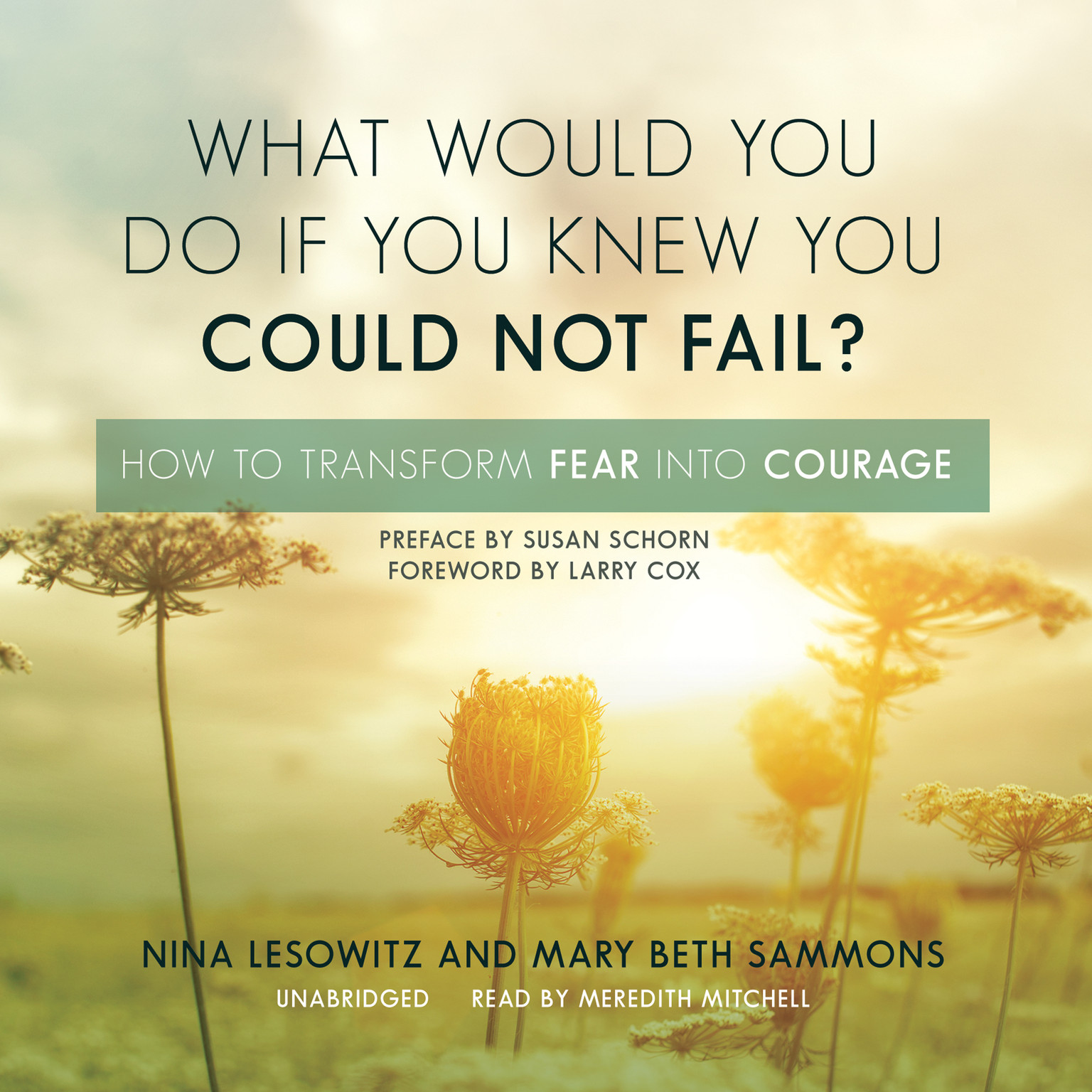 Printable What Would You Do If You Knew You Could Not Fail?: How to Transform Fear into Courage Audiobook Cover Art