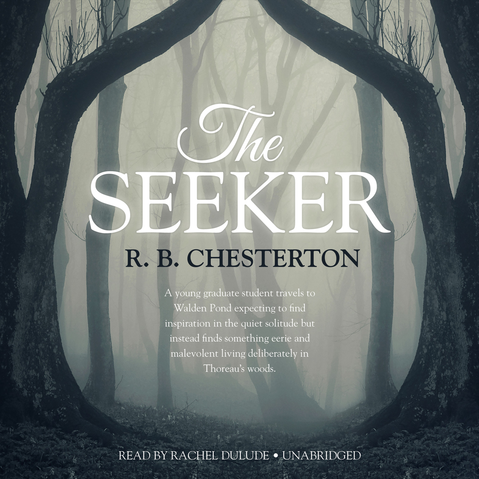 Printable The Seeker Audiobook Cover Art