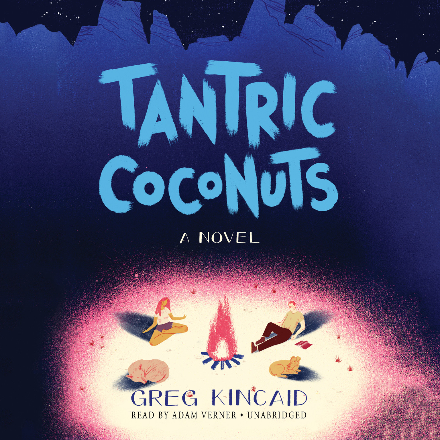 Printable Tantric Coconuts: A Novel Audiobook Cover Art