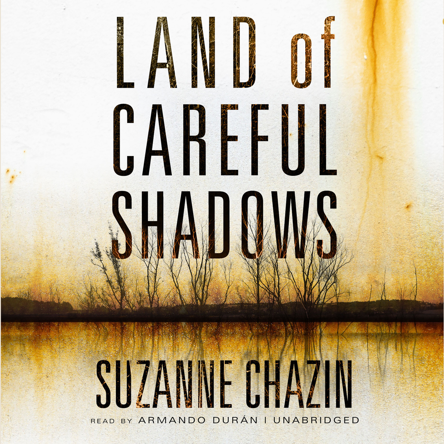 Printable Land of Careful Shadows Audiobook Cover Art