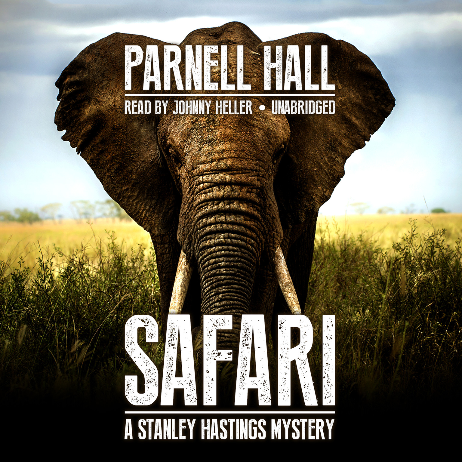 Printable Safari Audiobook Cover Art
