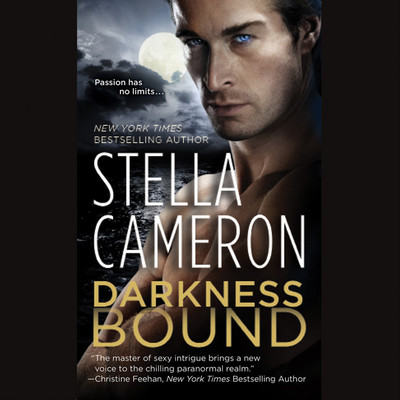 Darkness Bound Audiobook, by Stella Cameron