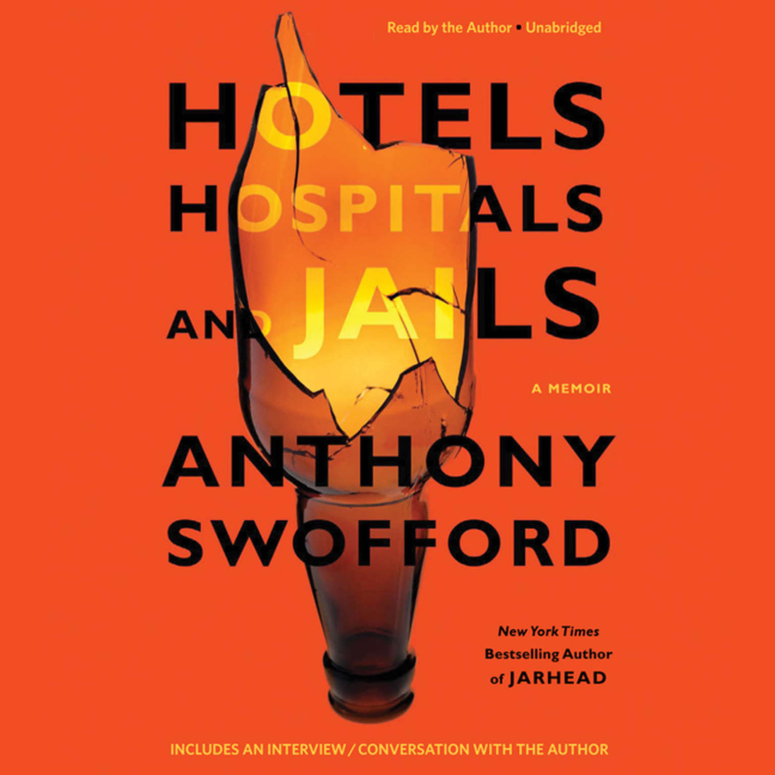 Printable Hotels, Hospitals, and Jails: A Memoir Audiobook Cover Art