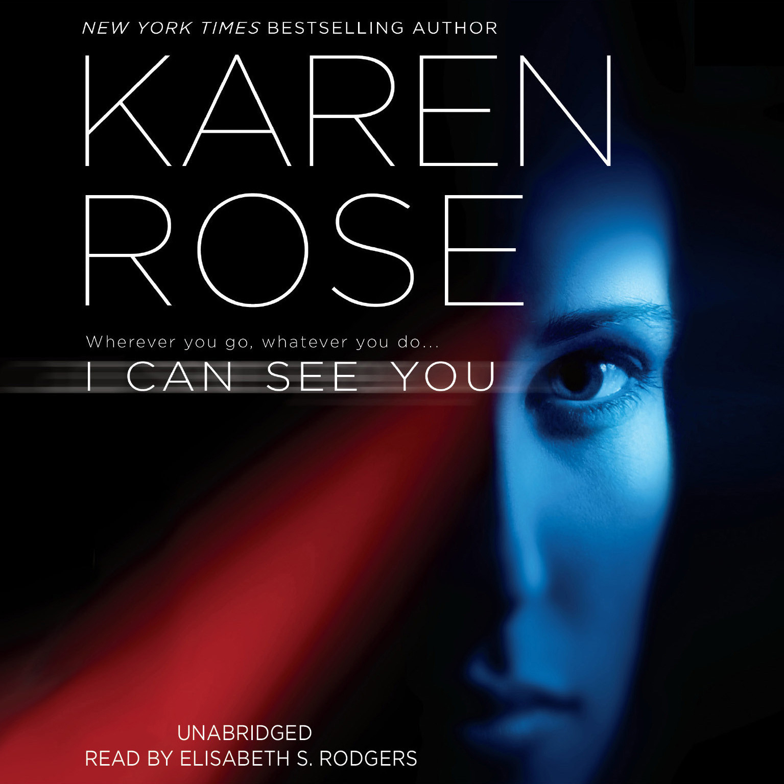 Printable I Can See You Audiobook Cover Art