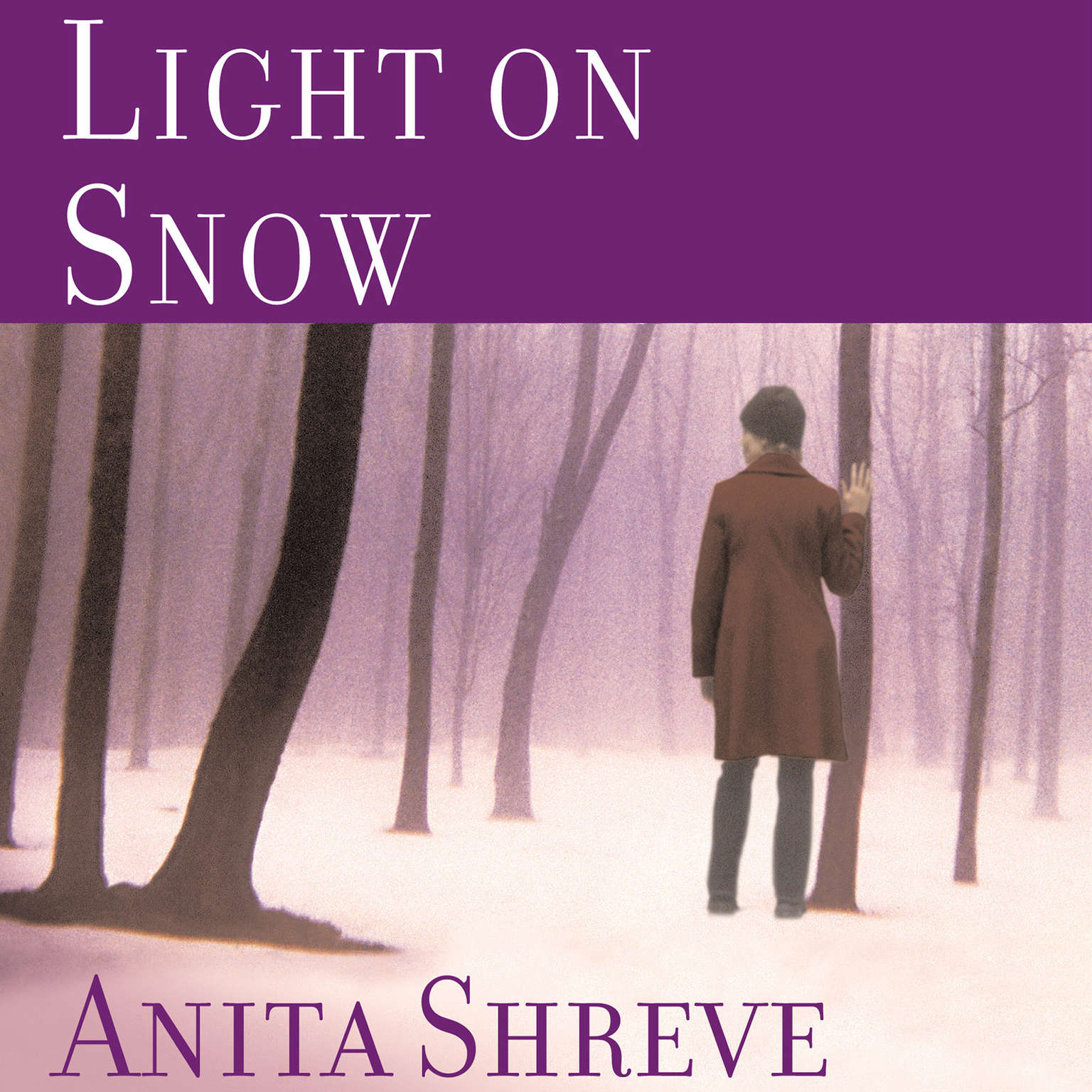Printable Light on Snow Audiobook Cover Art