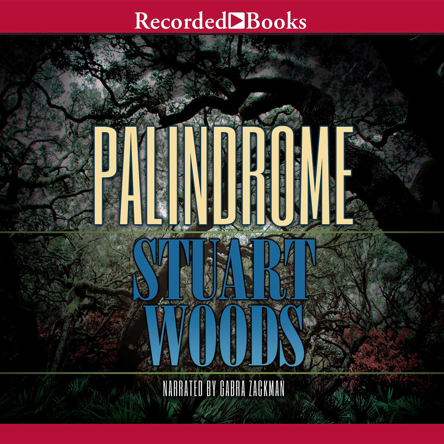 Printable Palindrome Audiobook Cover Art