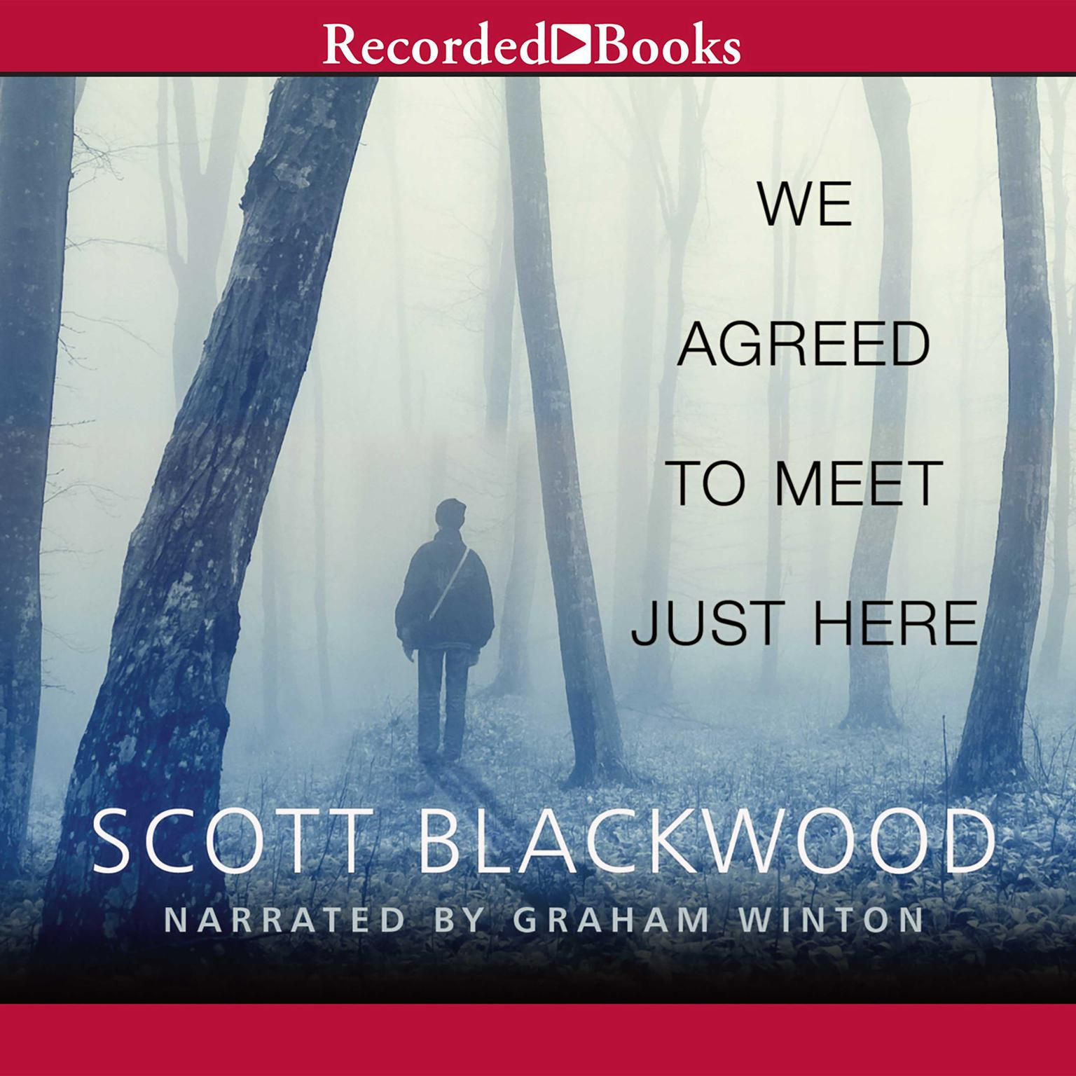 Printable We Agreed to Meet Just Here Audiobook Cover Art