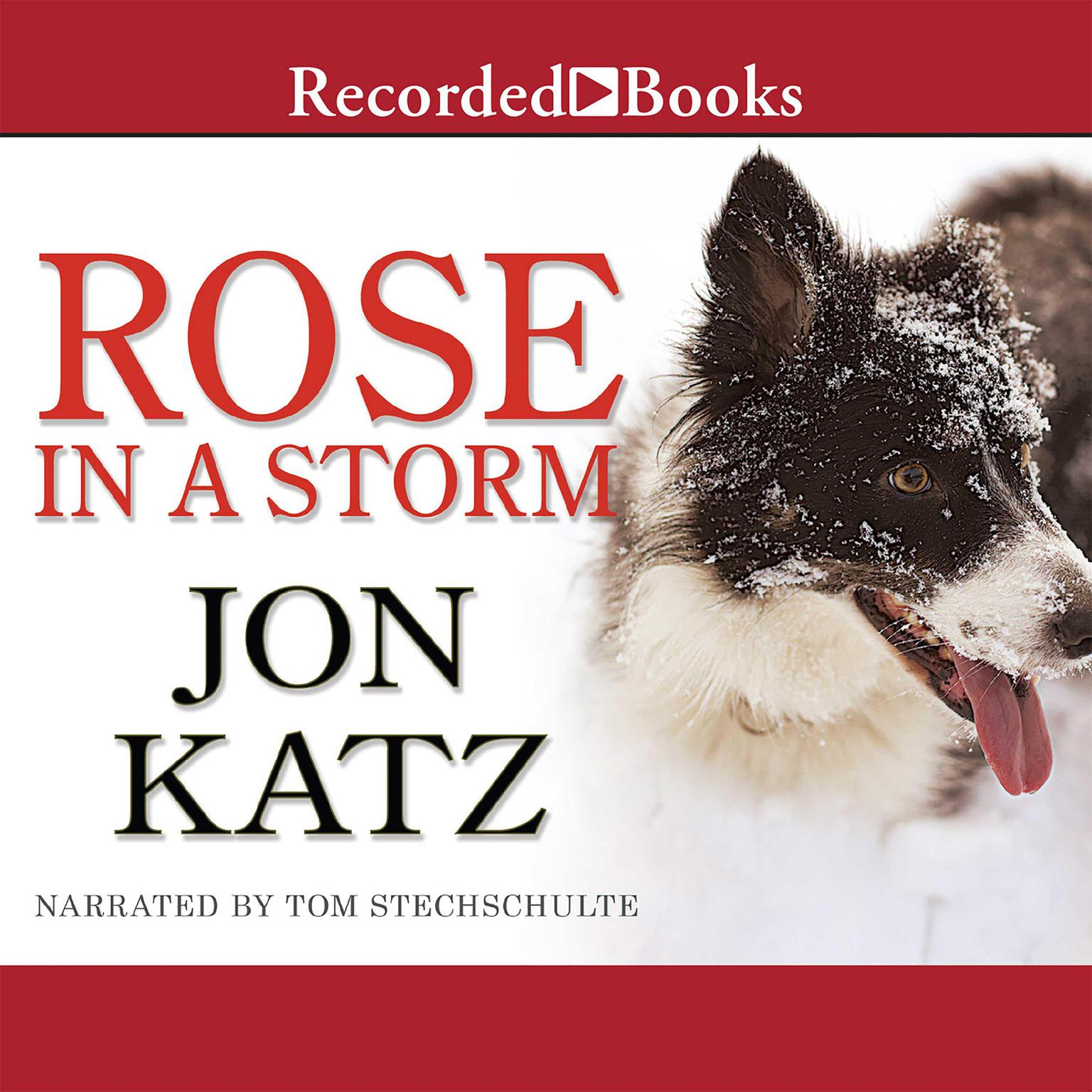 Printable Rose in a Storm: A Novel Audiobook Cover Art