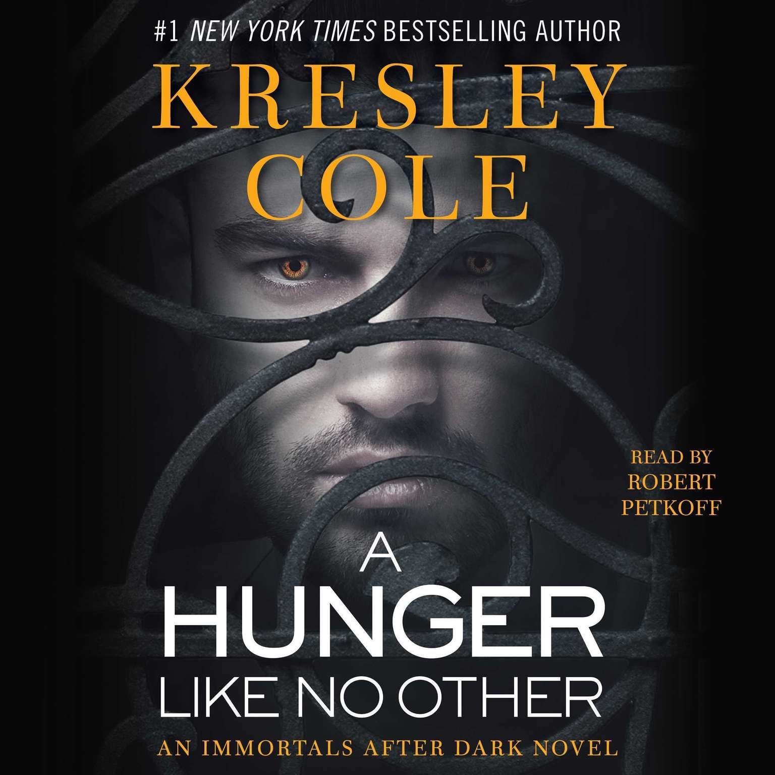 Printable A Hunger like No Other Audiobook Cover Art