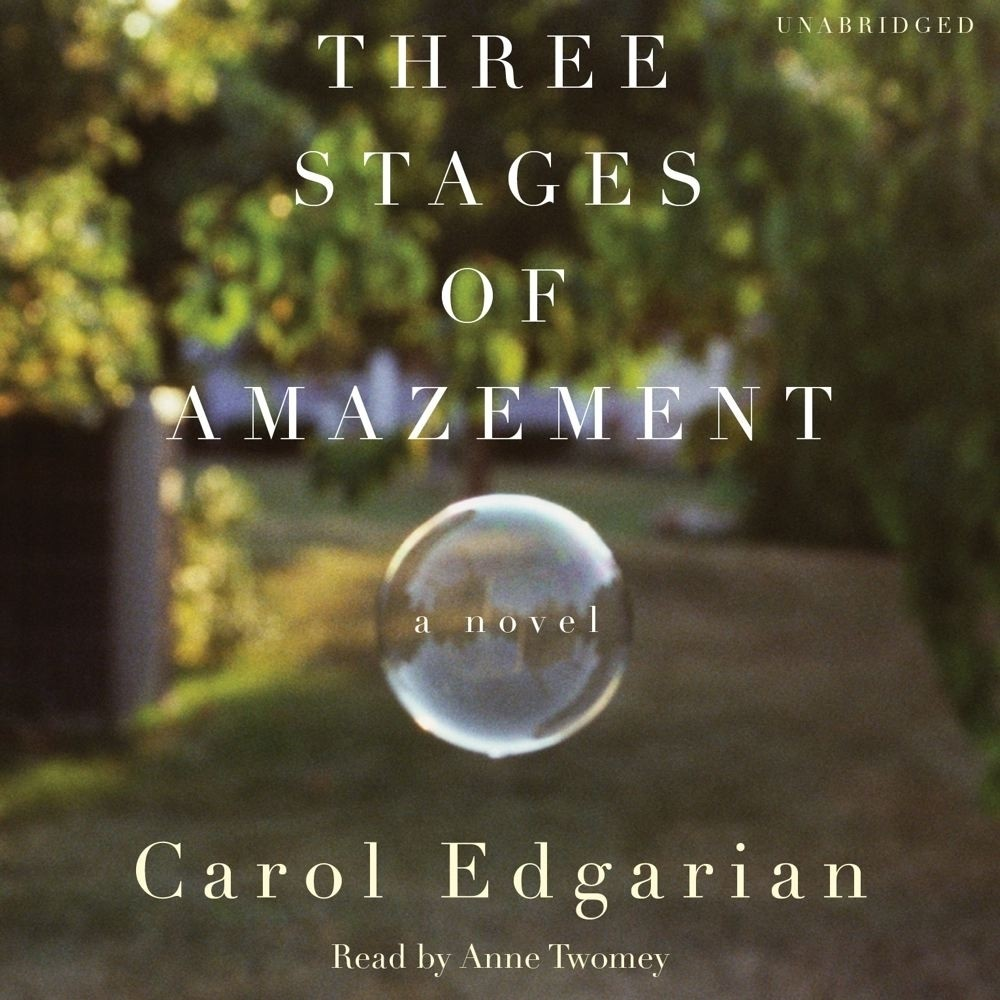 Printable Three Stages of Amazement: A Novel Audiobook Cover Art