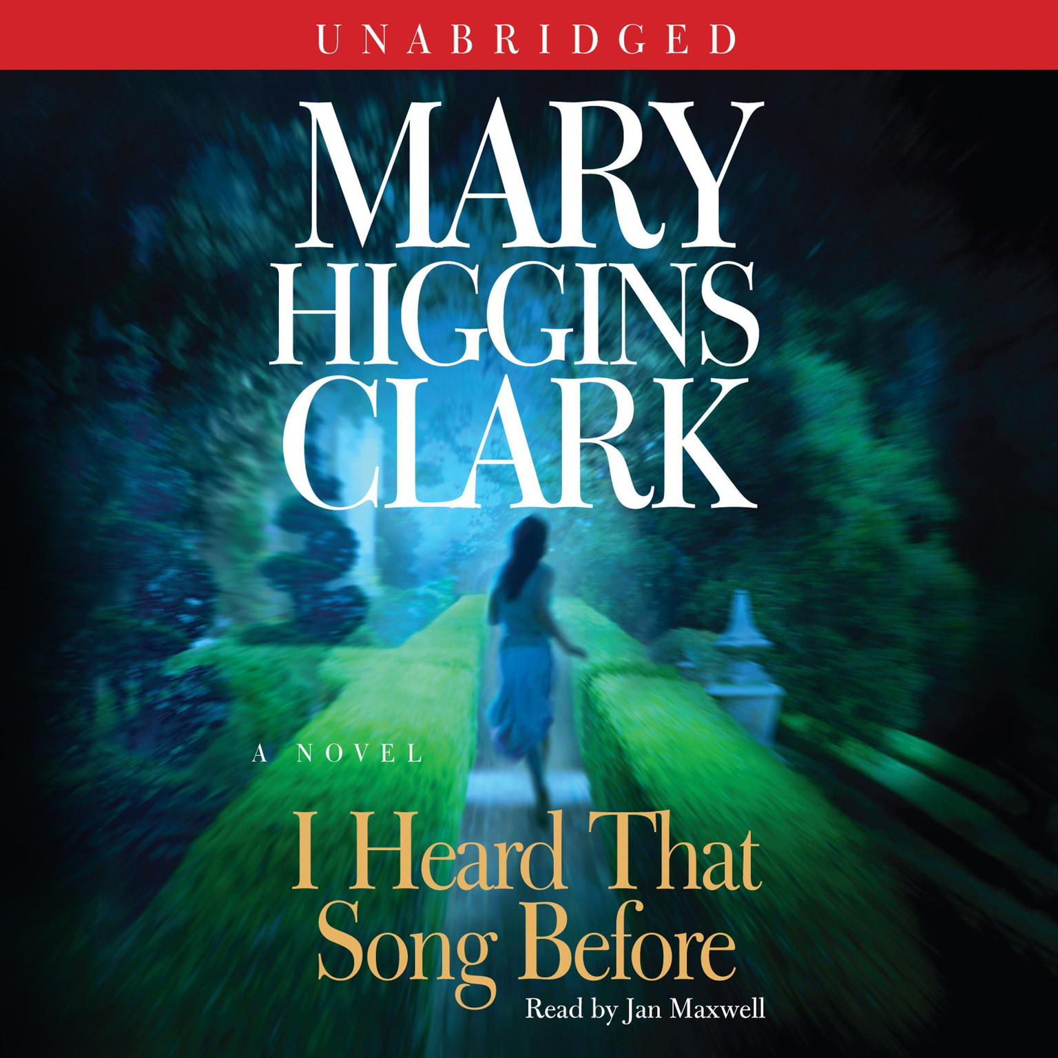 Printable I Heard That Song Before: A Novel Audiobook Cover Art