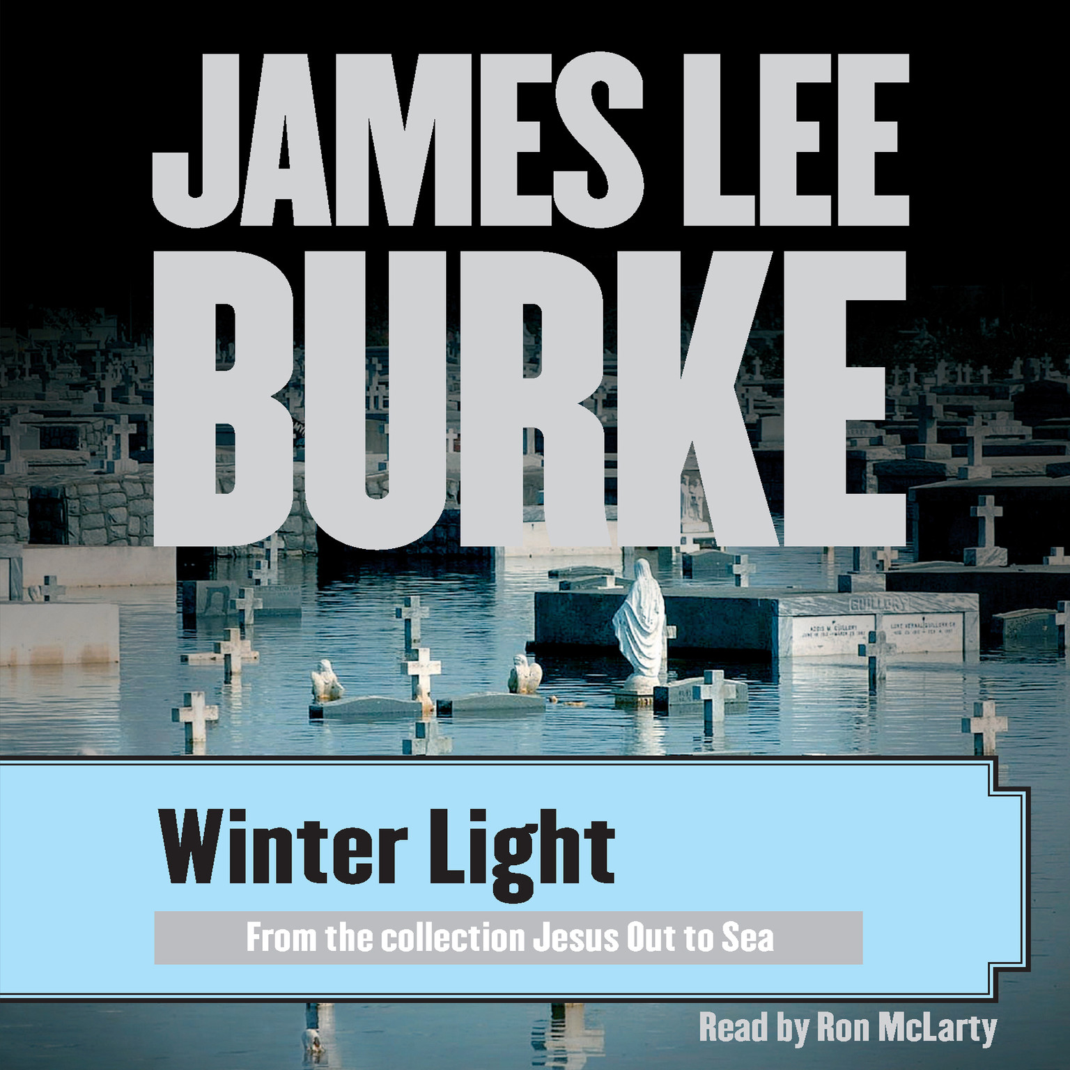 Printable Winter Light Audiobook Cover Art