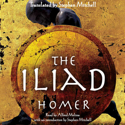 The Iliad Audiobook, by