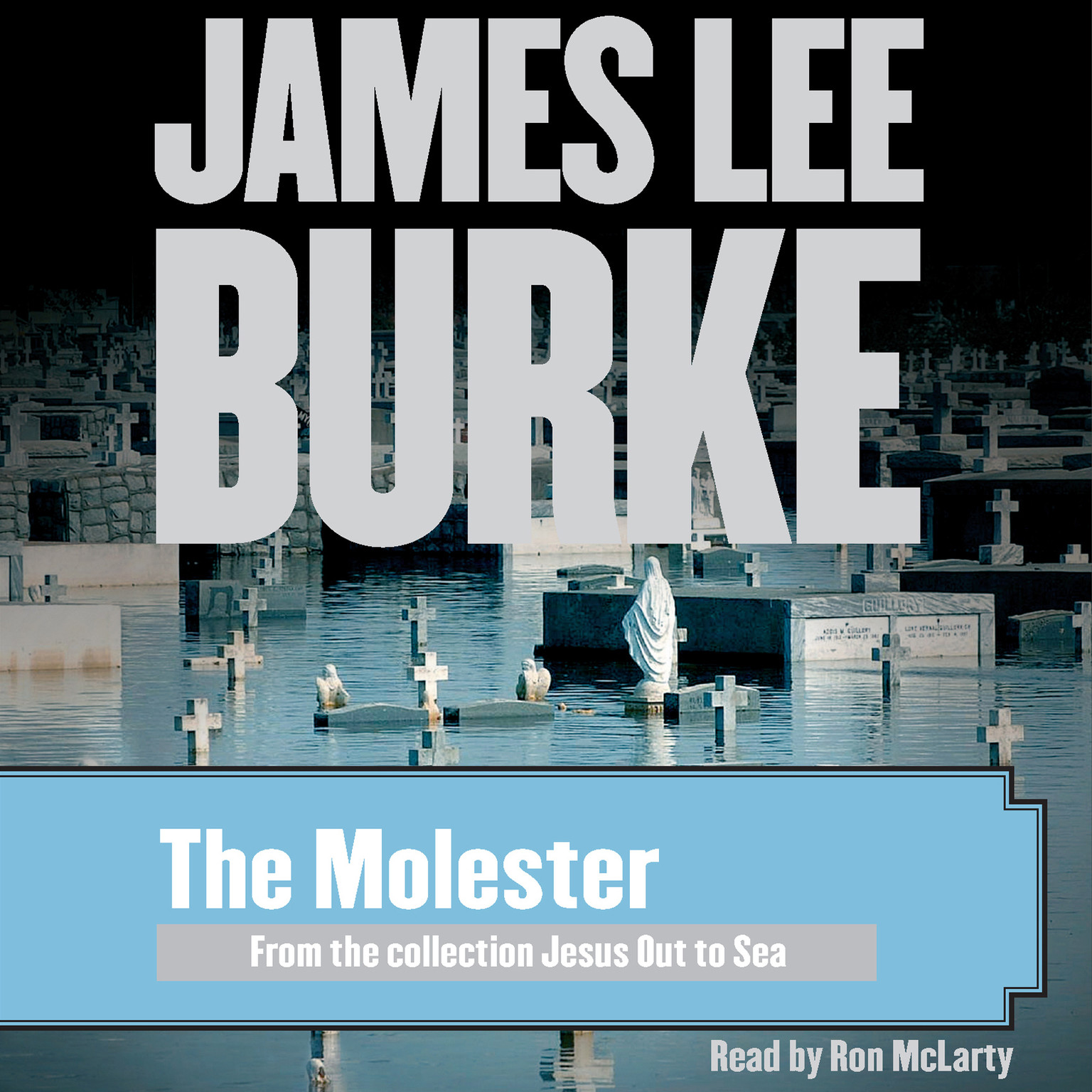 Printable The Molester Audiobook Cover Art